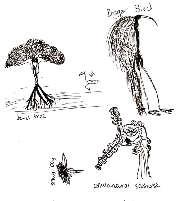 labelled – Khadeja Ali draws