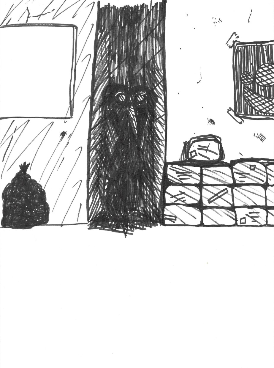 drawing of a mysterious creature in the shadow of an alleyway between two buildings with packages and a garbage bag standing in front of the buildings. It is drawn with black marker in a dark comic book or cartoon style.